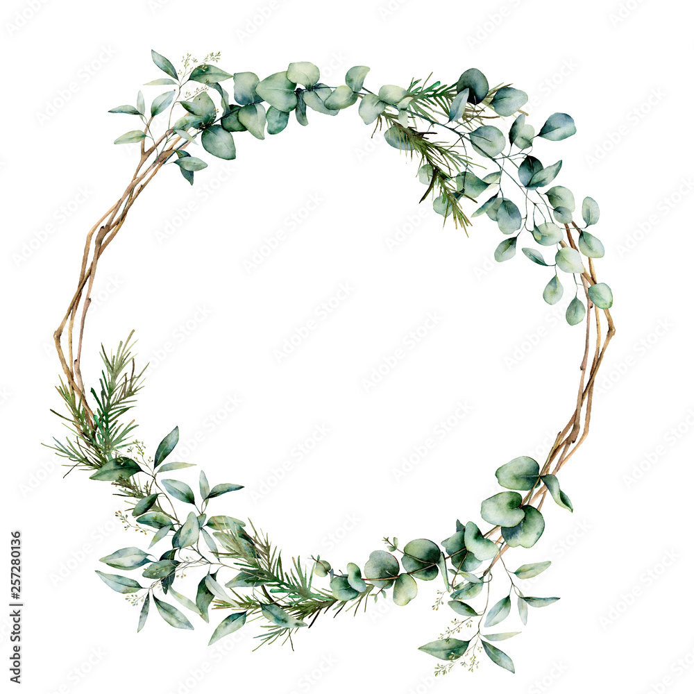 Fototapety, obrazy: Watercolor eucalyptus branch wreath. Hand painted eucalyptus branch and leaves isolated on white background. Floral illustration for design, print, fabric or background.
