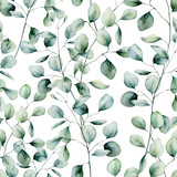 Watercolor silver dollar eucalyptus seamless pattern. Hand painted eucalyptus branch and leaves isolated on white background. Floral illustration for design, print, fabric or background. - 257280199