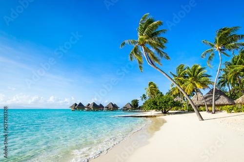 Obraz Wakacje na plaży na tropikalnej wyspie na południowym Pacyfiku - fototapety do salonu