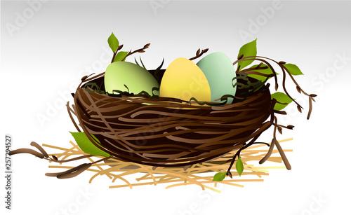 Fototapeta Easter eggs in the nest obraz