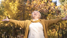 Cheerful Granny Enjoying Beautiful Autumn Weather Strolling In Park, Golden Age
