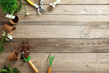 Gardening Tools, Flowers, Plant, Pot, Scattered Earth, Seeds On Wooden Background With Copy Space For Text, Flat Lay Composition, Top View