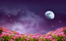 Fantasy Background Of Night Sk...