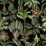 Wzór z egzotycznymi drzewami, takimi jak palma, monstera i banan. Tapeta w stylu vintage wnętrza. - 257346722