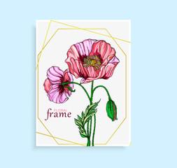 Vegetable vector set of flower of poppy. Round frame. Poppy flowers.