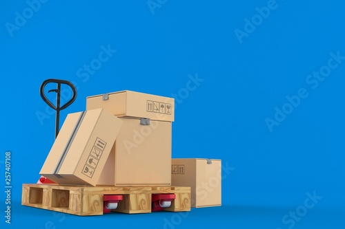 Stampa su Tela Hand pallet truck with packages
