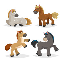 Cute Horses In Various Poses. Cartoon Style Farm Animals. Different Colors And Breeds. Slleeping, Standing, Riding And Walking Horses. Best For Kid Education.