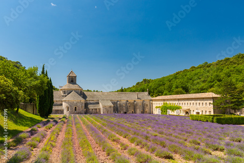 In de dag Lavendel Abbey of Senanque and blooming rows lavender flowers. Gordes, Luberon, Vaucluse, Provence, France, Europe.