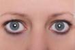 canvas print picture - Nahaufnahme, Augen und Augenbrauen einer Frau, blaue graue Farbe der Iris
