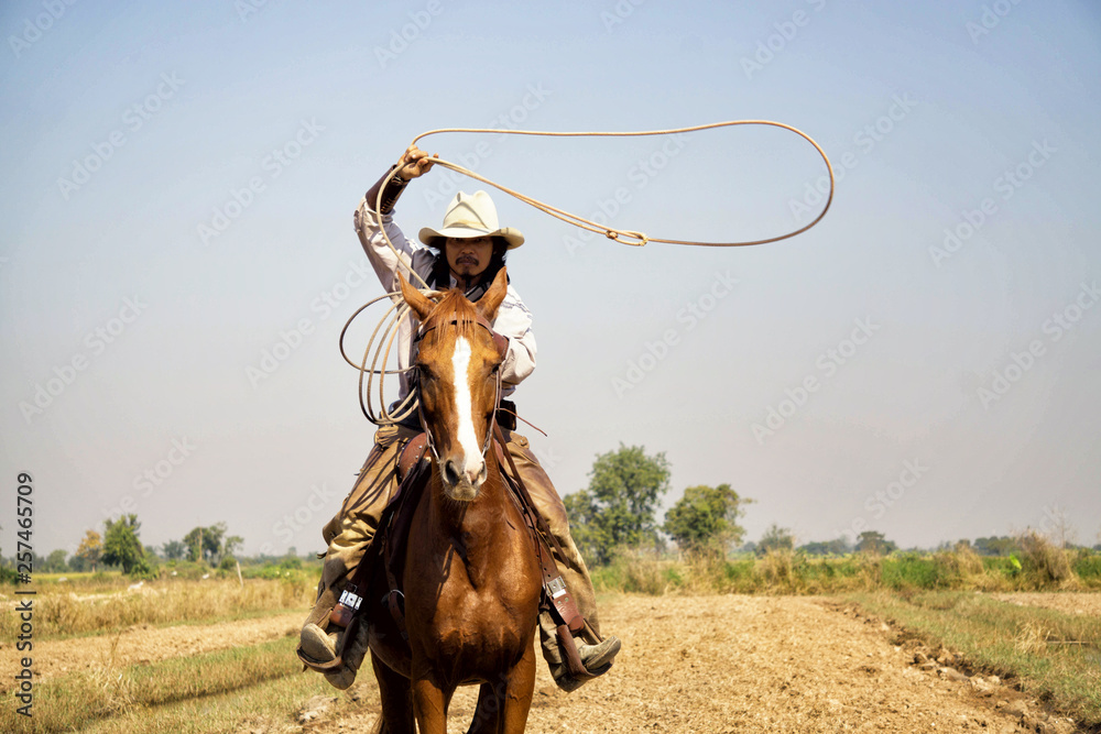 Fototapety, obrazy: cowboy and horse  at first light,mountain, river and lifestyle with natural light background