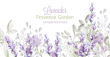 Lavender Card Vector Watercolo...