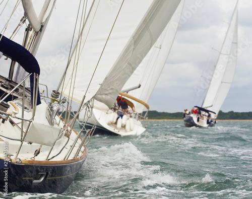 Garden Poster Racing Yachts