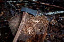 Chopping Axe On Stump