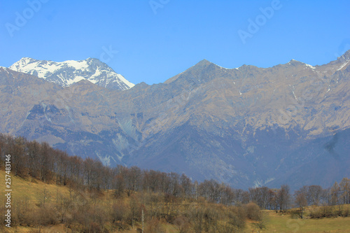panorama with mountains and forest #257483146