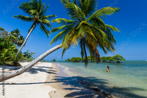 Tropical beach under clear blue sky in Boipeba Island, South Bahia, Brazil - 257484736
