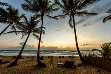Dawn On Tropical Beach In Peninsula De Marau, Barra Grande, Bahia State, Brazil
