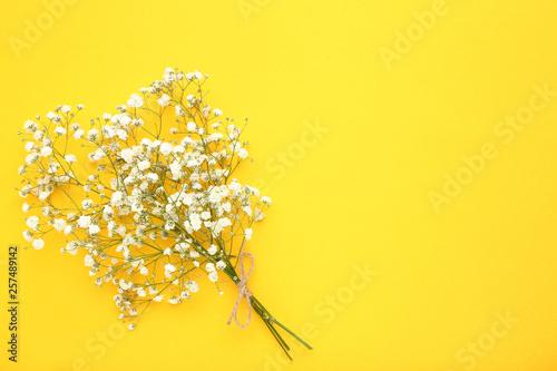 Stickers pour porte Pierre, Sable White gypsophila flowers on yellow background