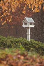 Birdhouse And Fall Color Shrou...