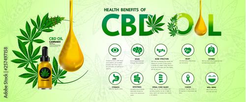 Photo  Cannabis benefits for health vector illustration.