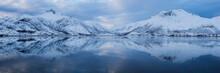 Mountains Reflecting In Vatterfjordpollen, Lofoten Islands, Norway
