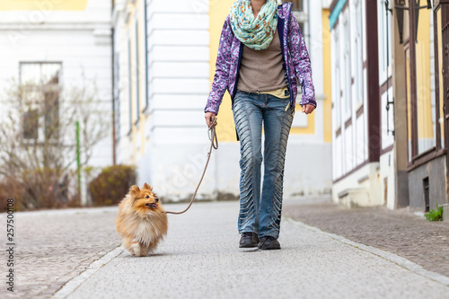 Valokuva  A woman leads her dog on a leash