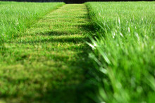 Mowing The Lawn. A Perspective...