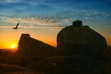 White Stork (Ciconia Ciconia), On Rocks, Spain, Extremadura, Laguna Del Lavadero, Los Barruecos, Malpartida De Caceres