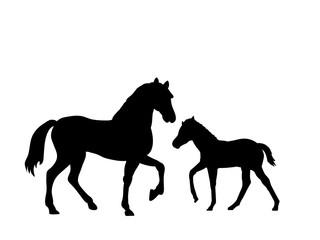 Horse and foal farm mammal black silhouette animal. Vector Illustrator.