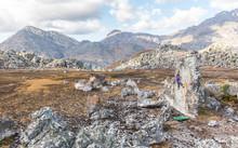Male Climbs Tall Boulder Among...