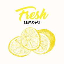 Fresh Lemon Vector Illustratio...