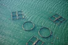 Aerial View Of Fishing Farm En...