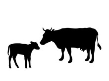 Cow And Calf Farm Mammal Black...