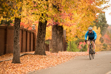 Autumn Scene Of Woman?road Biking In Nevada City