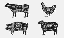 Set Of Meat Diagrams. Cuts Of ...