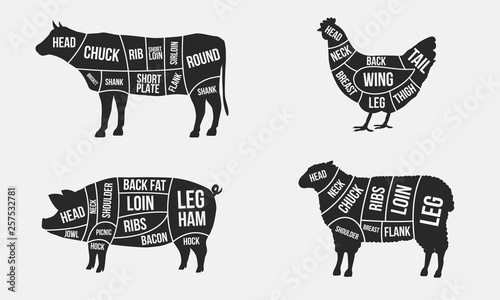 Leinwand Poster Set of Meat diagrams