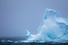 Iceberg In Sea, Westfjords, Iceland