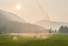 Agricultural Sprinkler In Field, Mazama, Washington State, USA