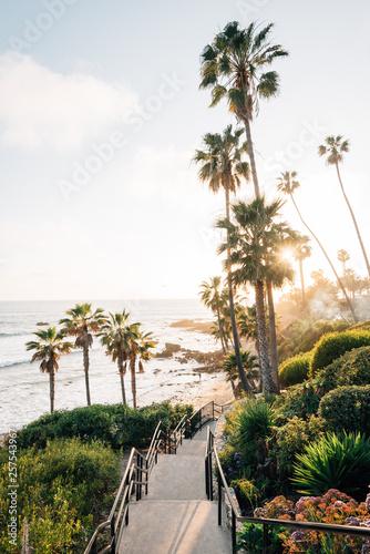 Staircase and palm trees at Heisler Park, in Laguna Beach, Orange County, California