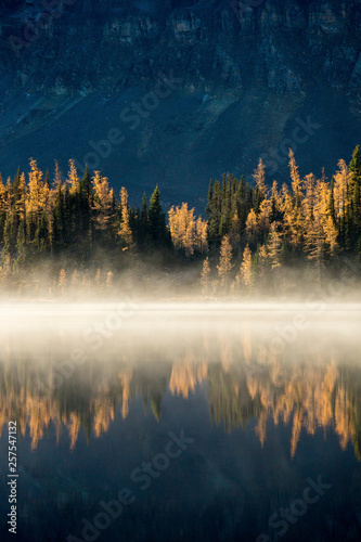 Poster Morning with fog Mountain reflected in a lake, Mount Assinboine Provincial Park, British Columbia, Canada