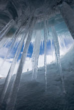 Icicles In Athabasca Glacier I...