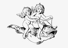 Babies Riding On A Fish