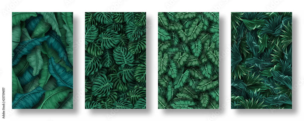 Fototapeta Set of tropical leaves background