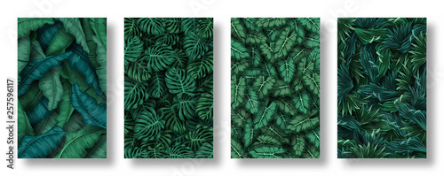 Set of tropical leaves background Fotobehang