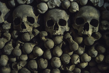 The Tree Human Skulls  On The Bones Background Are In The Dark Catacomb Night Shoot