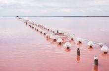 Salt Pink Lake