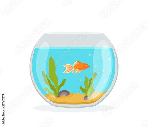 Vector aquarium golden fish silhouette illustration with water, seaweed, shells, sand bubbles Tableau sur Toile