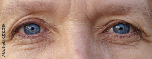 Stampa su Tela  Blue eyes of an elderly woman in close up view