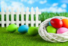 Happy Easter - Colored Eggs In Nest And On Short Cut Grass
