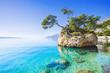 canvas print picture - Beautiful bay near Brela town, Makarska rivera, Dalmatia, Croatia