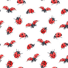 Watercolor Ladybug Seamless Pattern